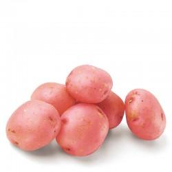 Potato Red 2 Kg