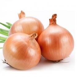Onion Pink-Nasik 1 Kg